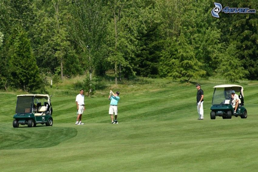 golf, trawnik, las