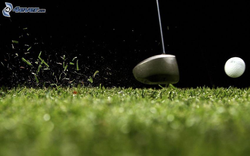 golf, trawnik, piłka golfowa