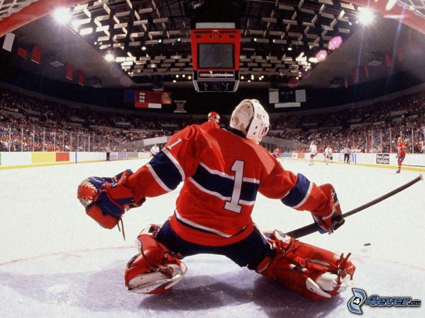 bramkarz, NHL