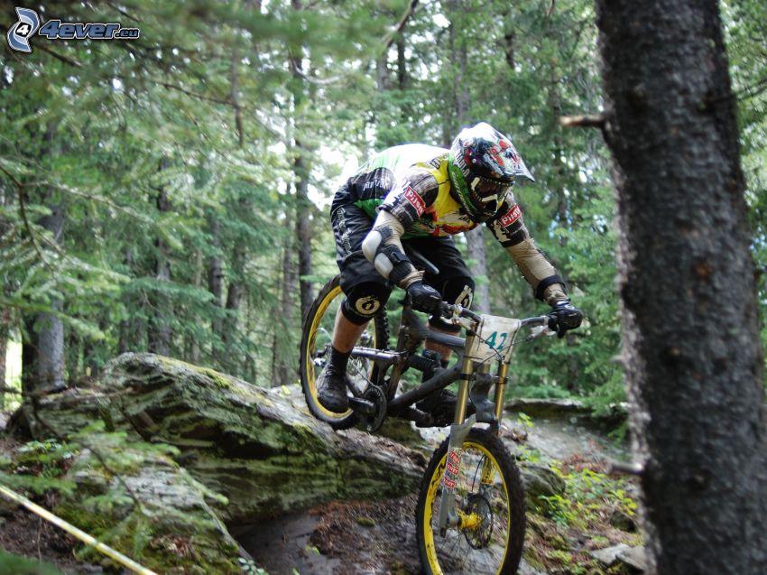 ekstremalny rowerzysta, mountainbiking, las