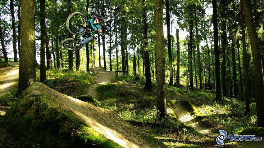 ekstremalny rowerzysta, skok na rowerze, las