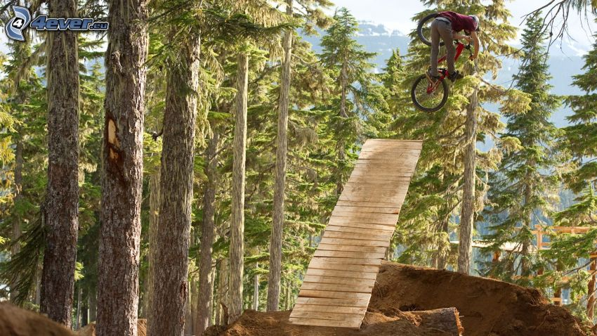 ekstremalny rowerzysta, skok na rowerze, las iglasty