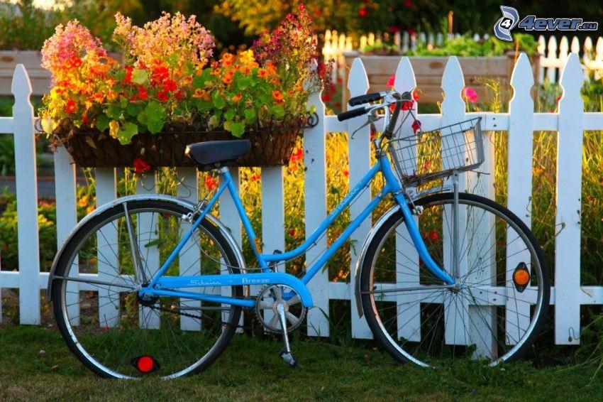 rower, drewniany płot, kwiaty