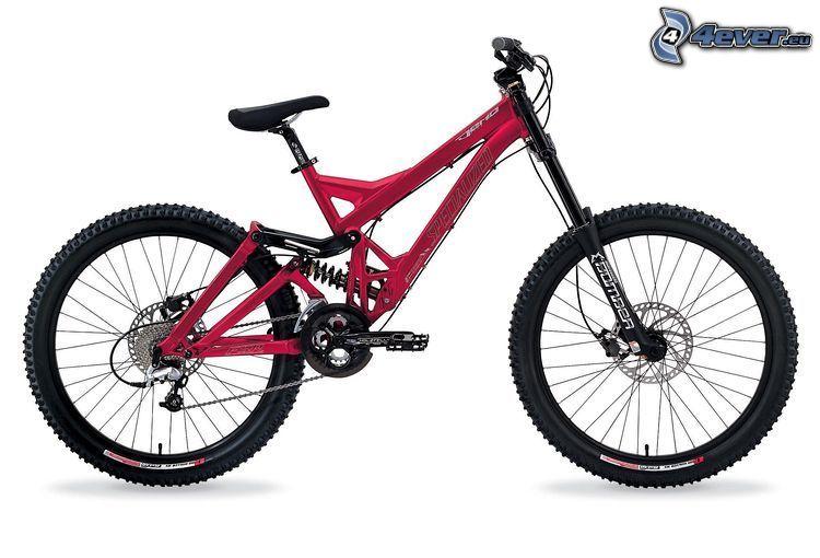 Specialized Demo 8, rower górski