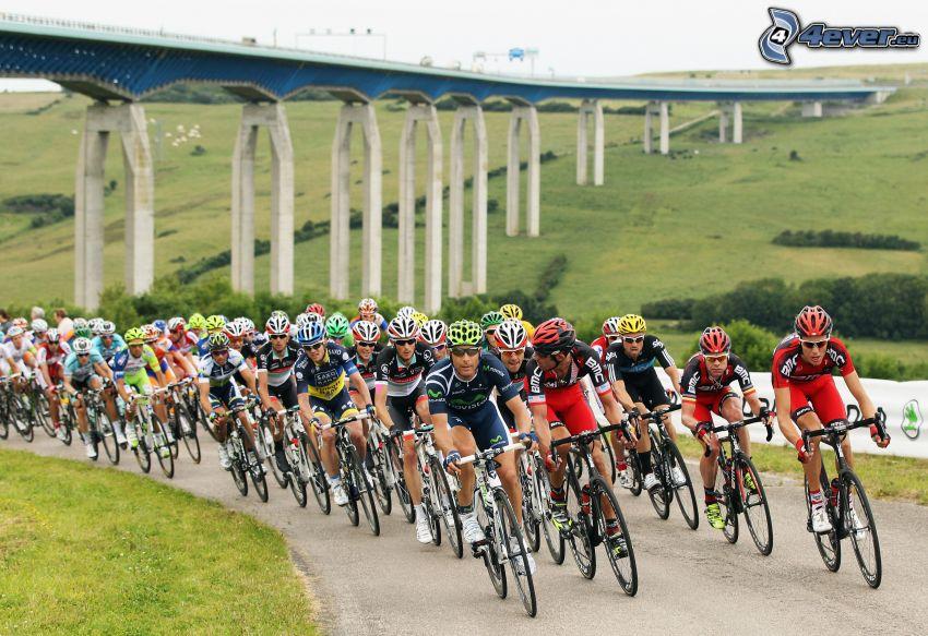 Tour De France, rowerzyści, most na autostradzie