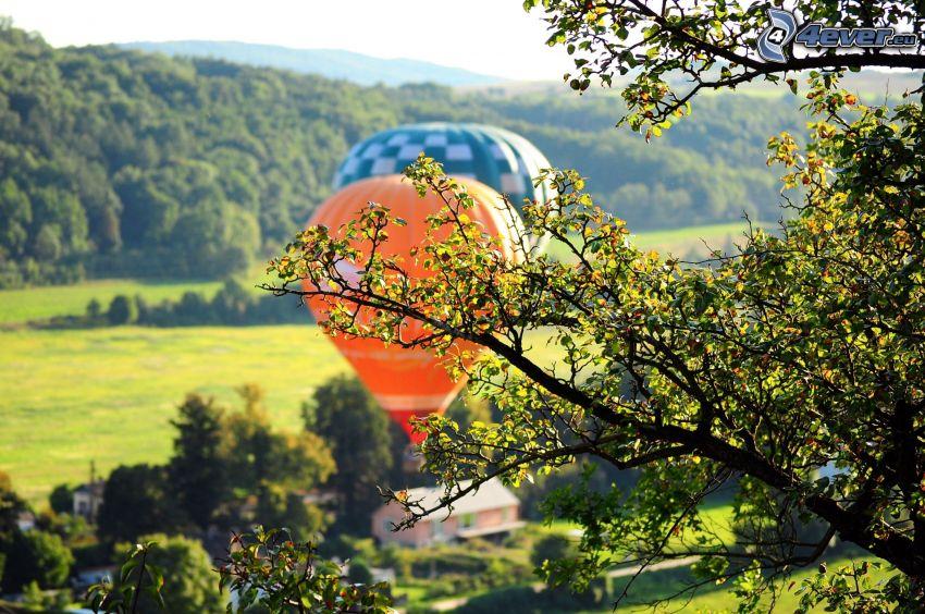 latające balony, drzewa