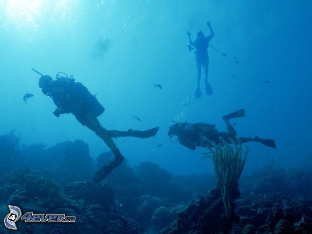 morze, nurkowie