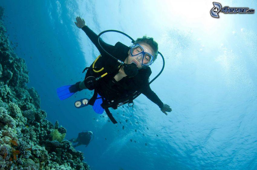 nurek, koralowce