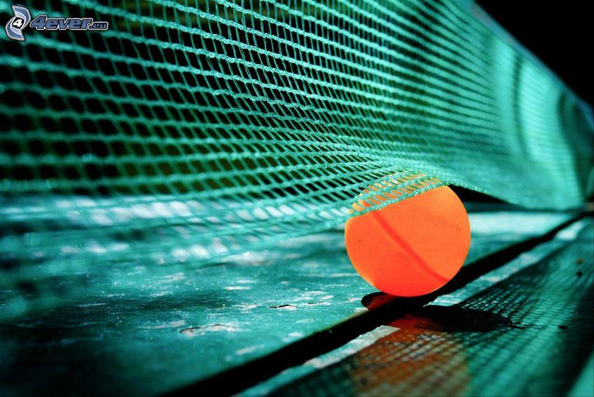 piłka, sieć, tenis stołowy