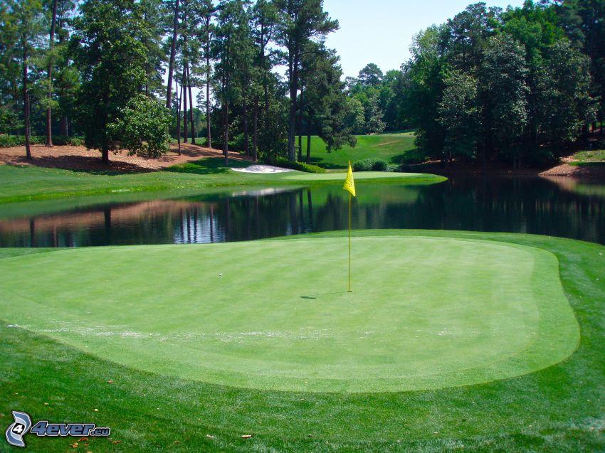 pole golfowe, jeziorko, drzewa