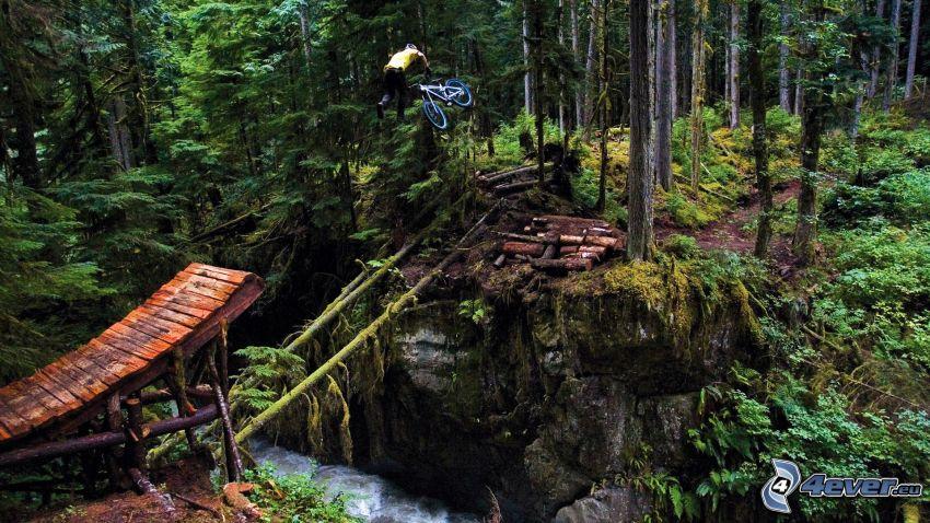 skok na rowerze, las, leśny strumyk