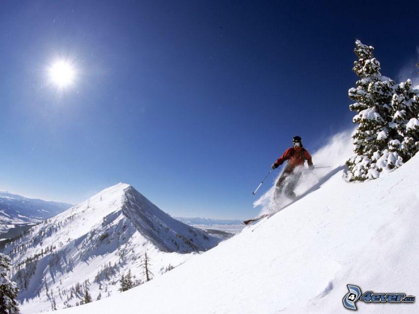 narciarstwo, śnieg, słońce