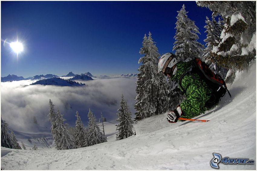 narciarz, adrenalina, słońce, inwersja, zaśnieżony las iglasty