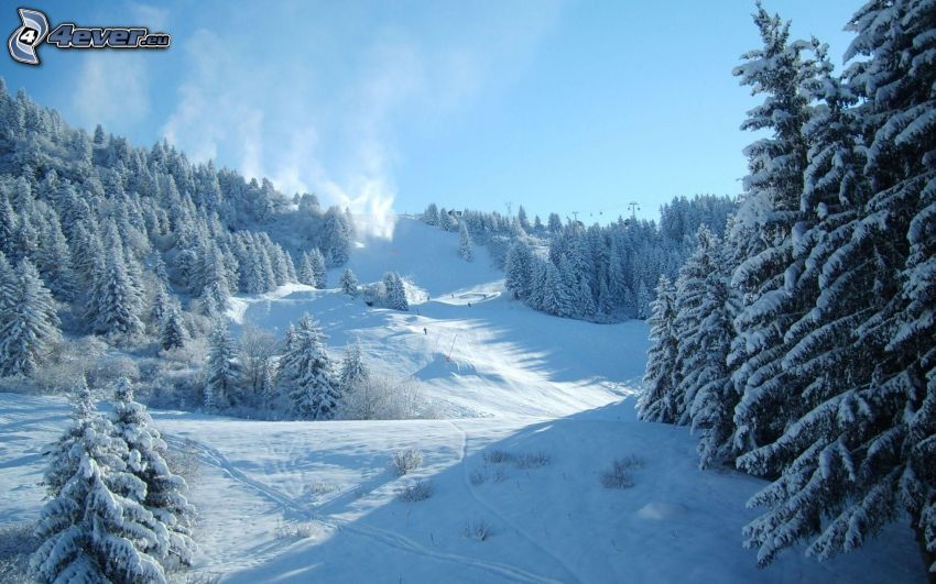 stok, narciarze, śnieżny krajobraz