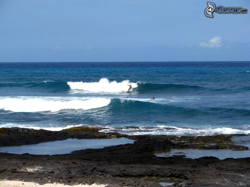 surfowanie, morze, plaża