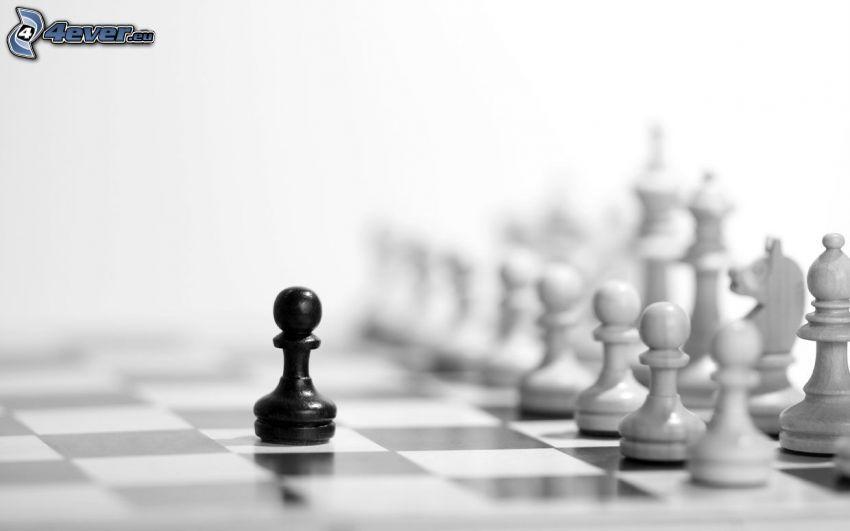 szachowe figury, czarno-białe zdjęcie
