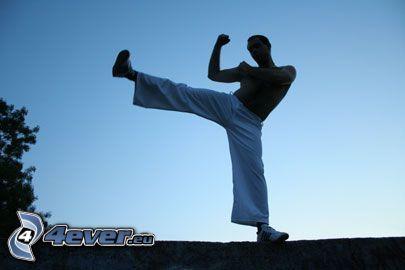 wojownik, kung fu