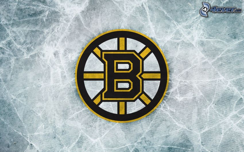 Boston Bruins, logo, NHL