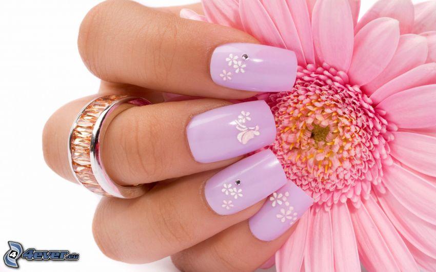 pomalowane paznokcie, gerbera, pierścień