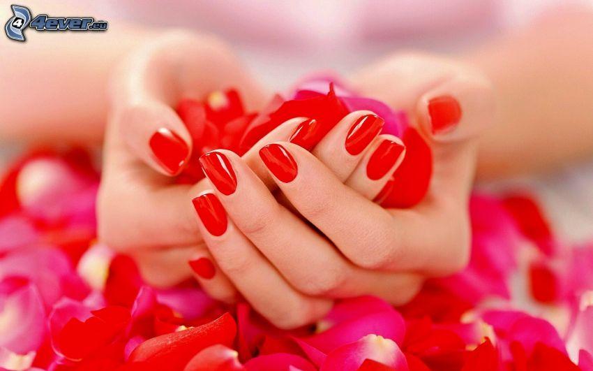 pomalowane paznokcie, płatki róż