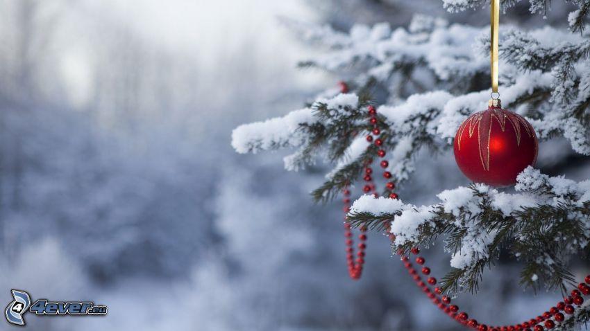 bombka choinkowa, ozdoby choinkowe, zaśnieżone drzewo