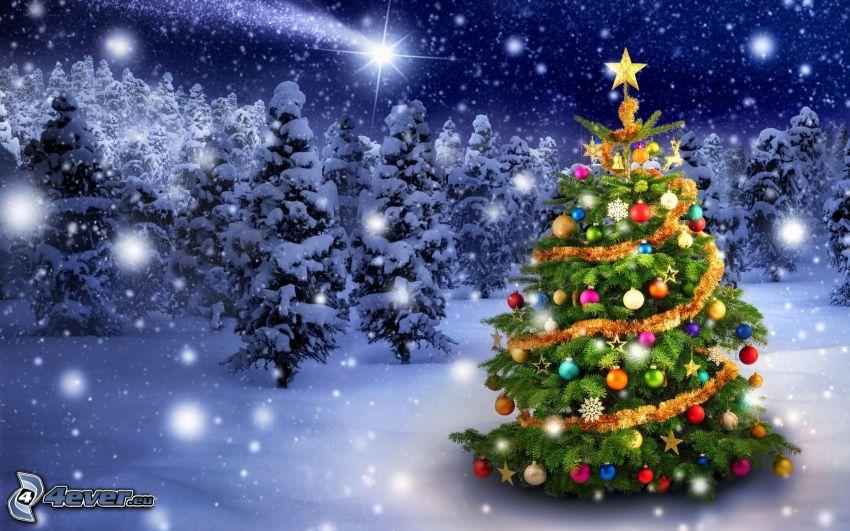 choinka, ośnieżone drzewa, opady śniegu