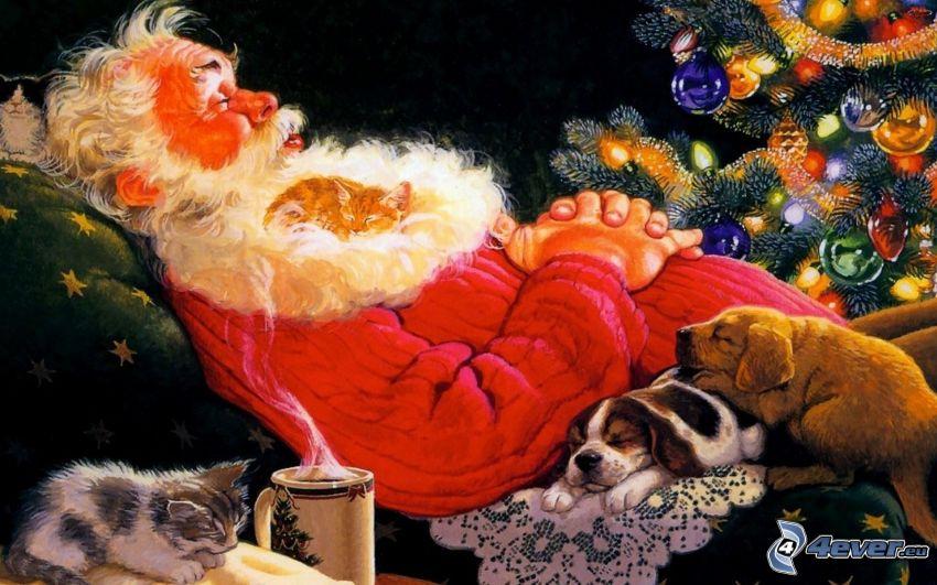 Święty Mikołaj, spanie, kot, psy, choinka