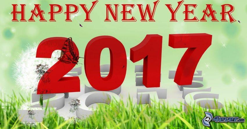 Szczęśliwego Nowego Roku, 2017, happy new year
