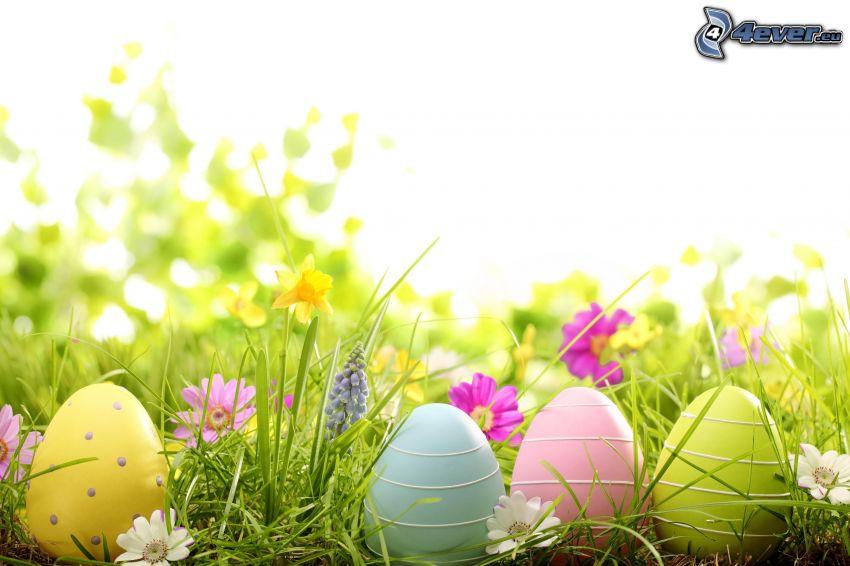 wielkanocne jajka, wiosenne kwiaty, żonkile
