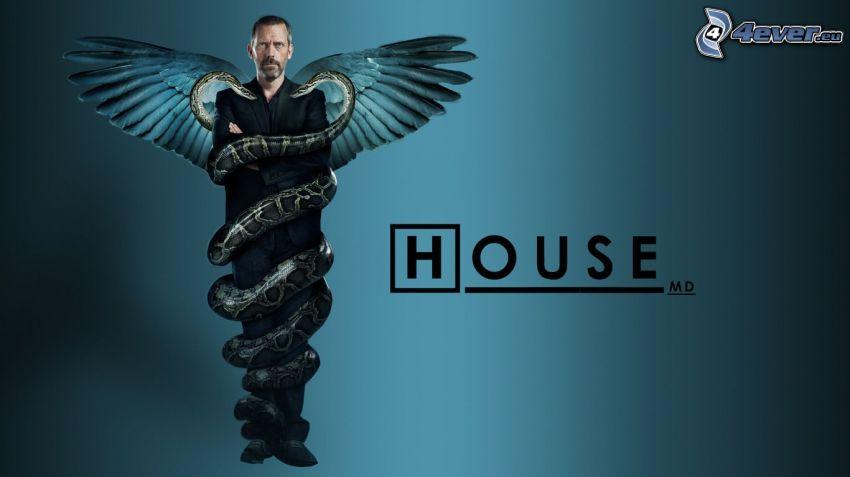 Dr. House, skrzydła, wąż