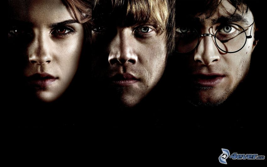 Harry Potter, Hermiona, Ron