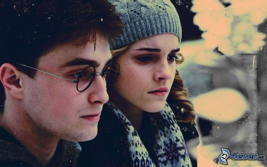 Harry Potter, Hermiona
