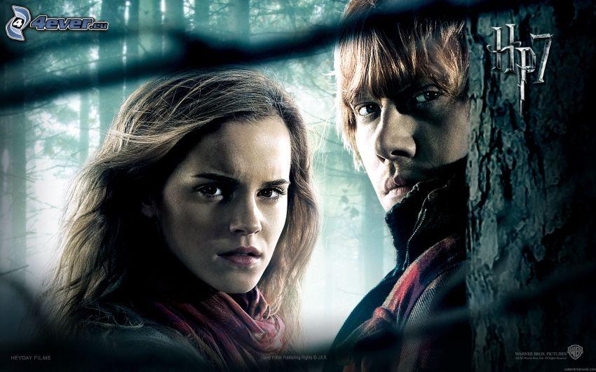 Harry Potter 7, Hermiona, Ron