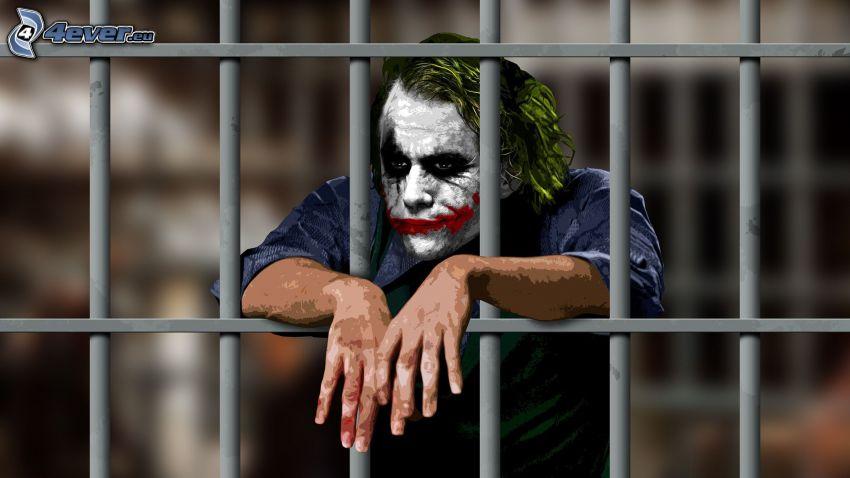 Joker, kraty