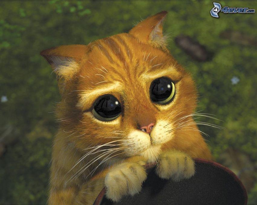 Kot w butach, Shrek 2, kocie oczy
