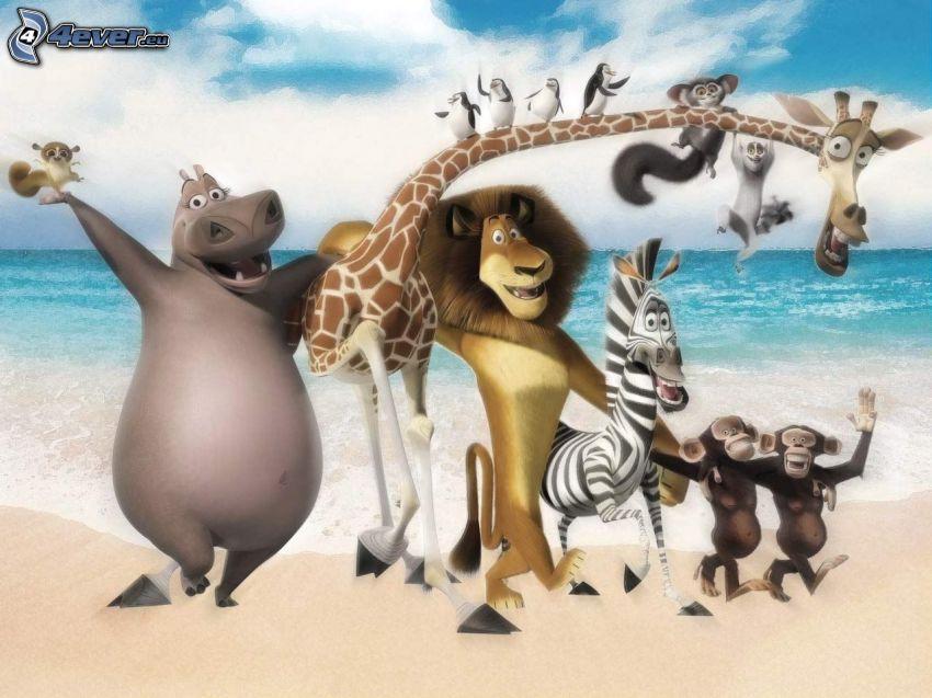 Madagaskar 3, morze
