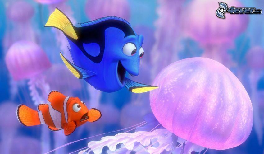Marlin & Dory, Gdzie jest Nemo?, meduza, ryba