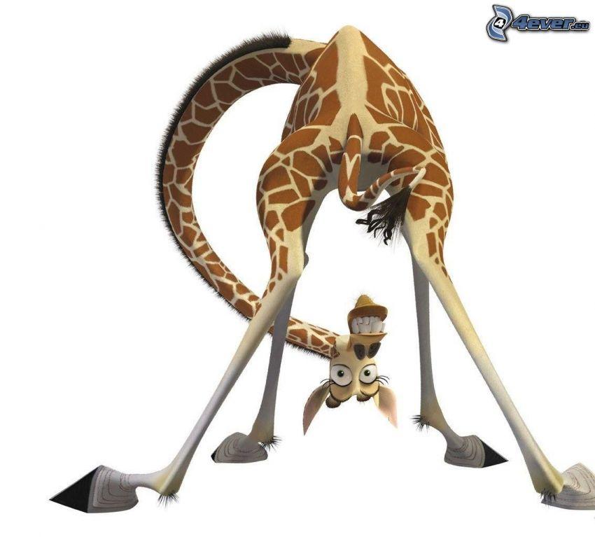 Melman, żyrafa z Madagaskaru, rysunkowa postać