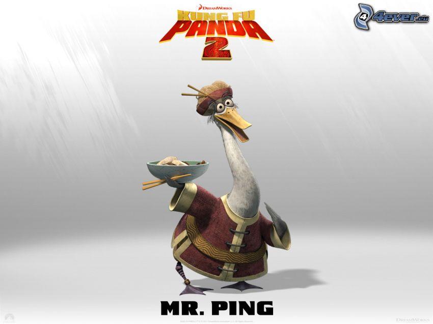 Mr. Ping, Kung Fu Panda