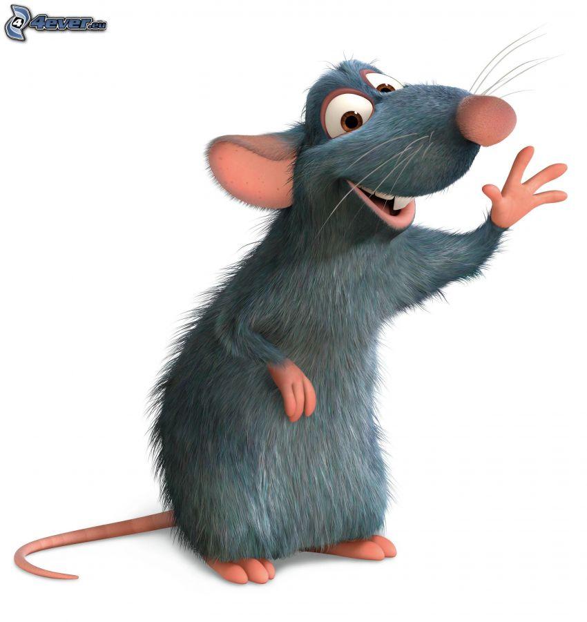 Remi, Ratatouille, mysz, kucharz
