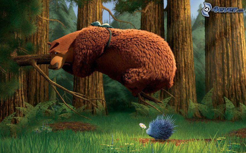 Sezon na misia, niedźwiedź, jeż