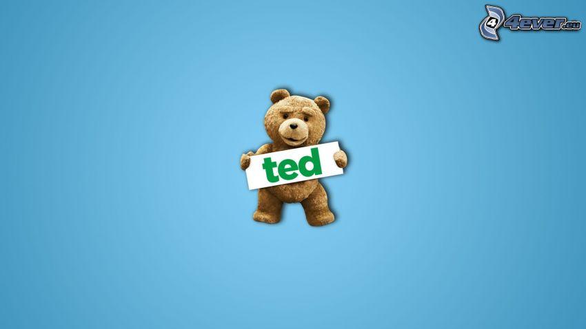 Ted, niebieskie tło