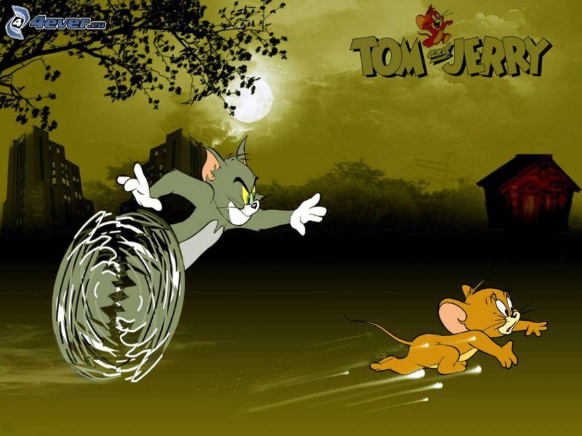 Tom i Jerry, bieg, wieczór