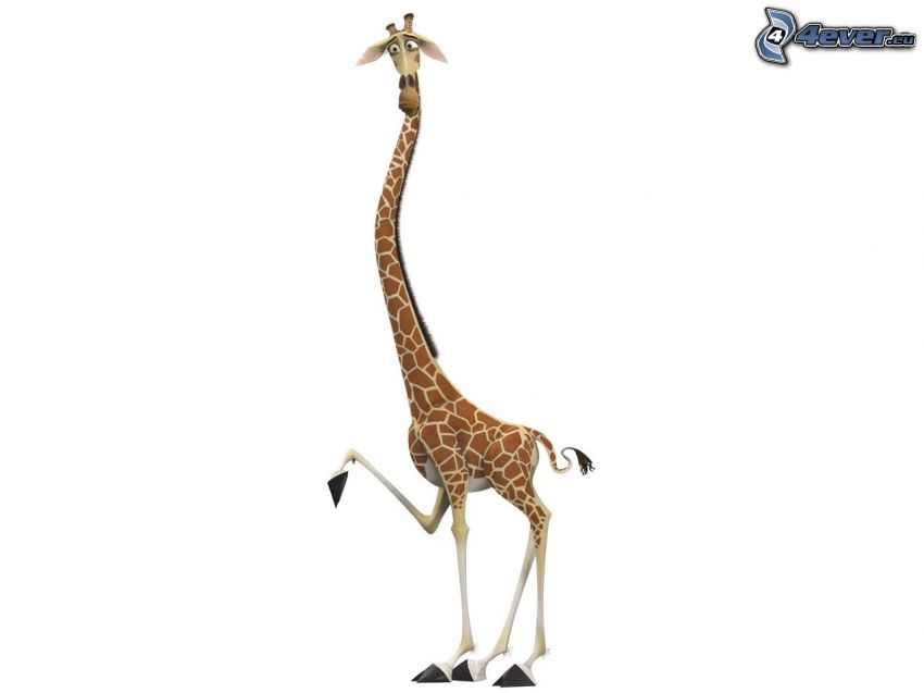 żyrafa z Madagaskaru, bajka
