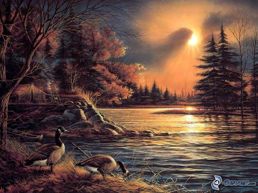kemping nad rzeką, kaczki, las, słońce