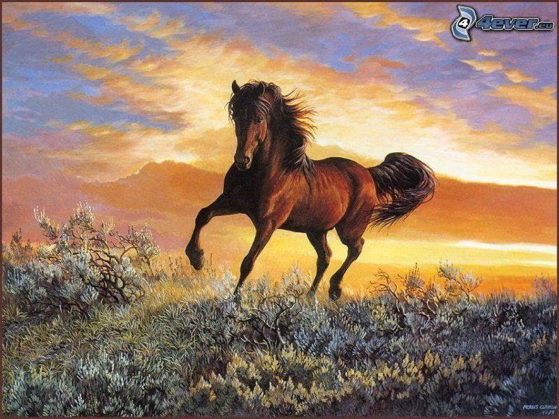 konie w galopie, ogier, krzak, chmury