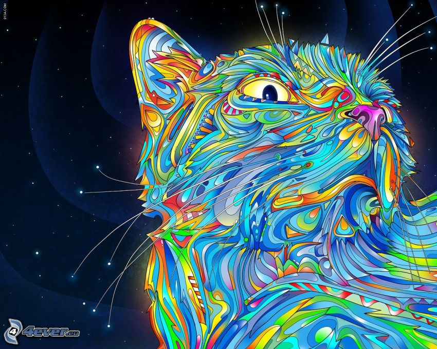kot rysunkowy, gwiazdy