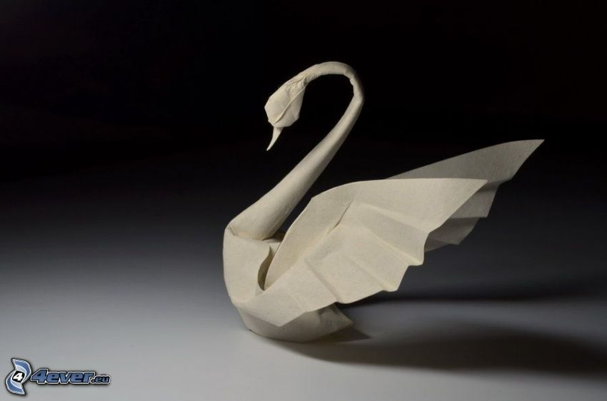 łabędź, origami