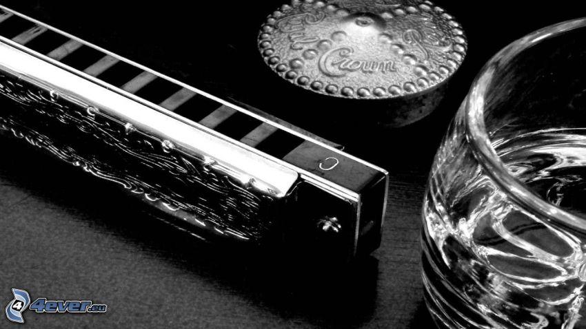 harmonijka, szklanka, czarno-białe zdjęcie