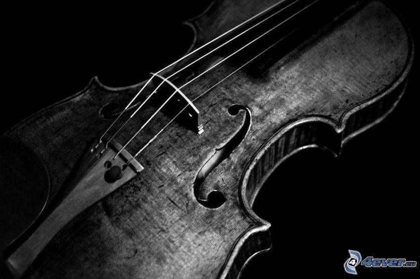 skrzypce, czarno-białe zdjęcie